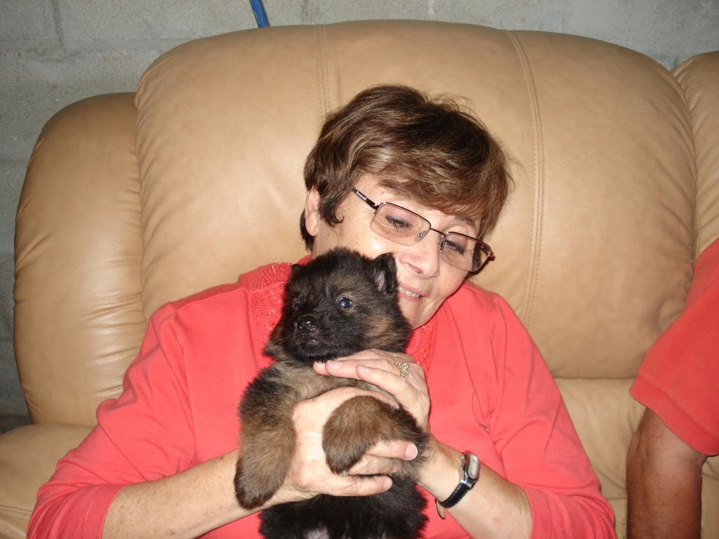 german_shepherd_my_mom